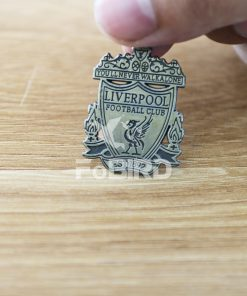 Anfield logo for stadium model