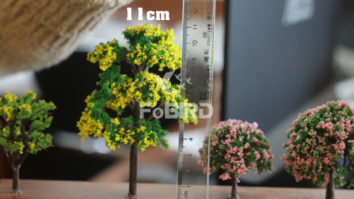 The tree has a yellow flower size of 11.0cm